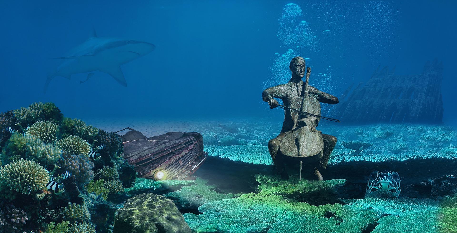 Chello im Meer