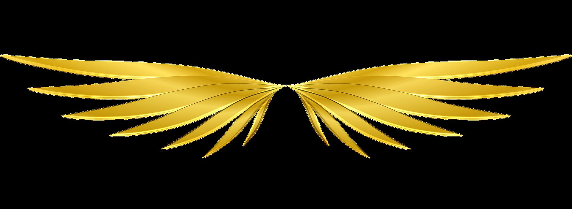 wings-3101175_1920-min